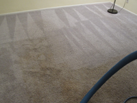 brentwood carpet services